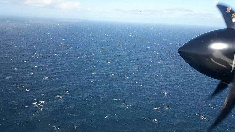 La búsqueda del ARA San Juan por aire y por mar en fotos