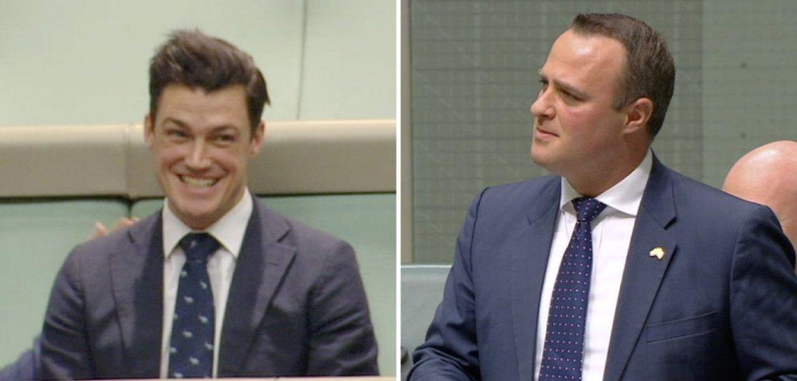 Diputado australiano le pidió matrimonio a su novio en plena sesión