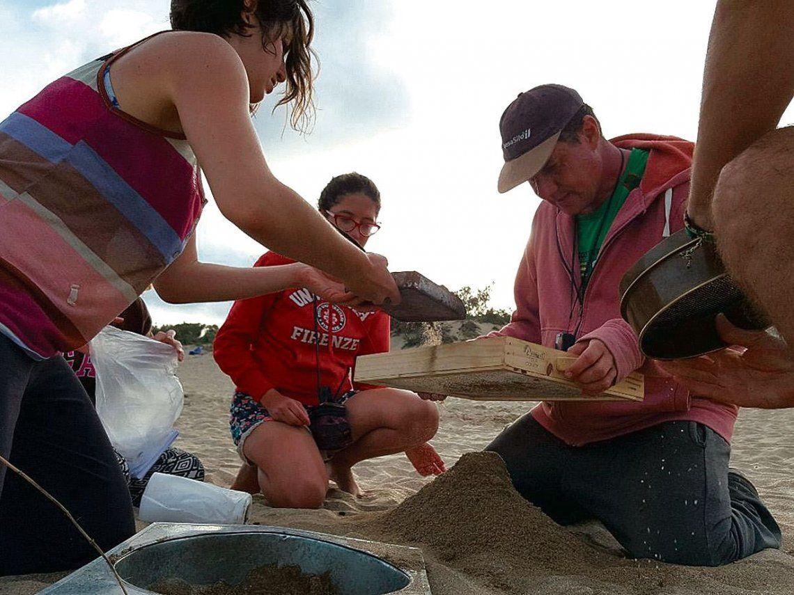 dLas playas de la costa atlántica tienen el mismo nivel de contaminación que otras partes del mundo.