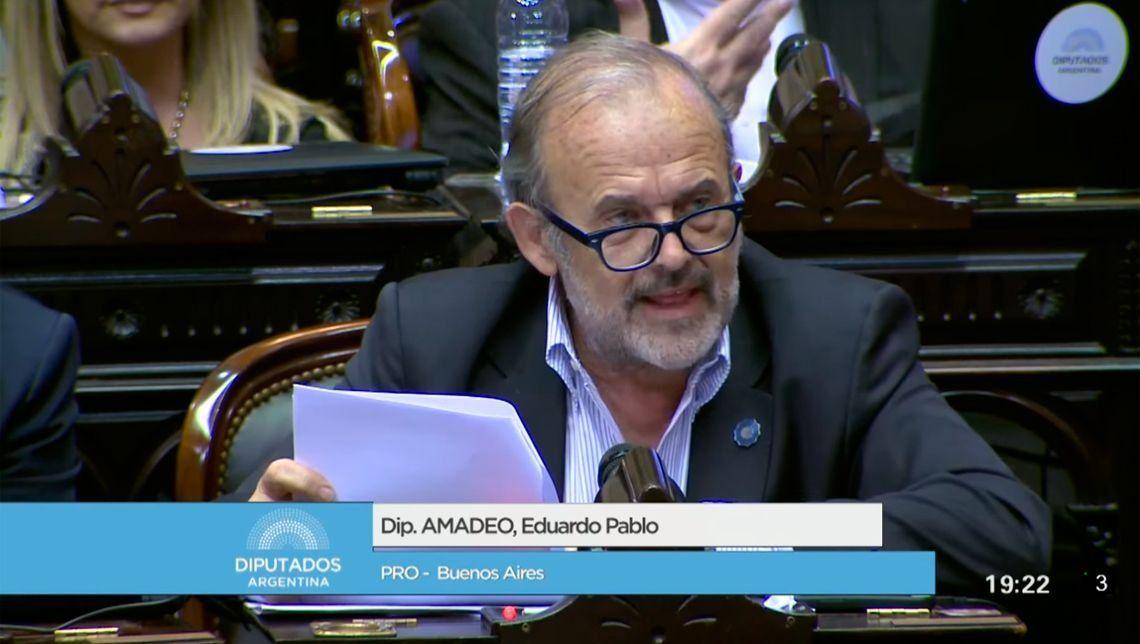 Un divino: el diputado Eduardo Amadeo les deseó una úlcera a Pablo Echarri y a Dady Brieva