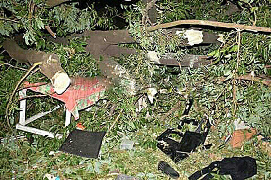 Joven murió aplastada por la rama de un árbol