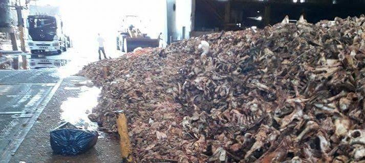 Bronca  contra  una fábrica por olores nauseabundos
