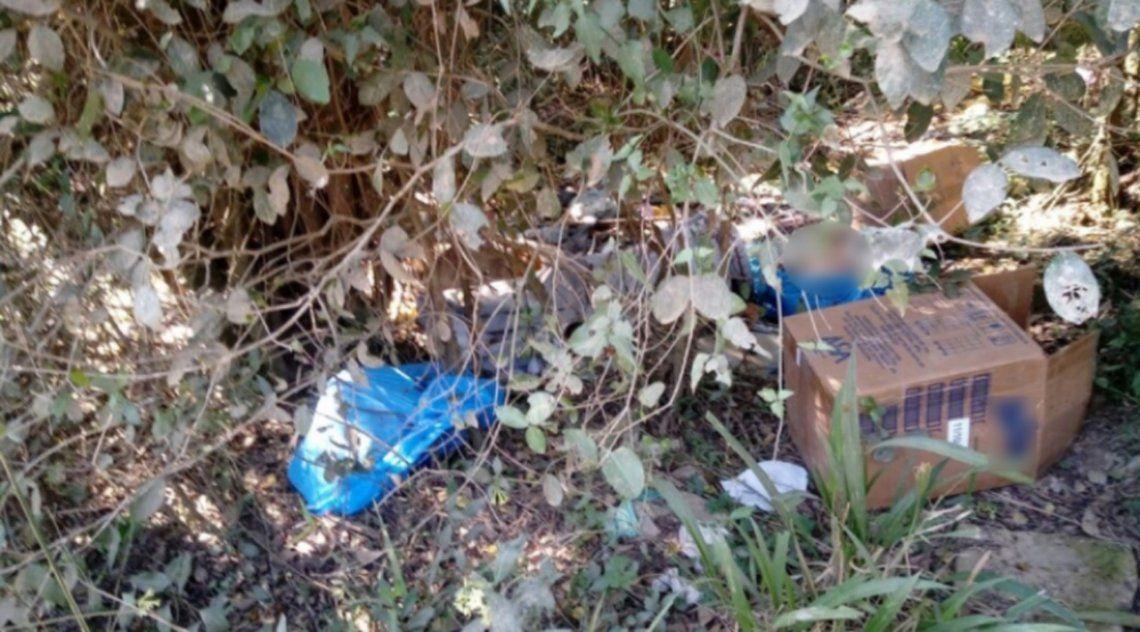 Brasil: buscan a un argentino por el crimen de dos niños en ritual macabro