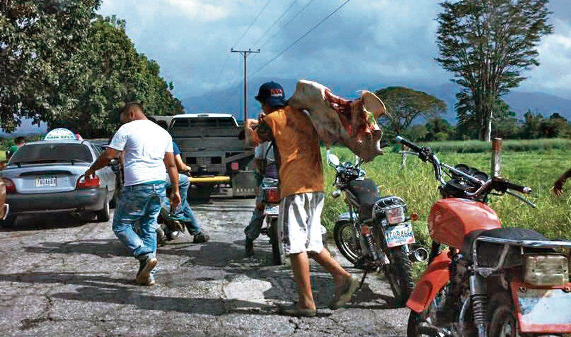 dLos saqueos se dieron en municipios del Estado andino de Mérida.