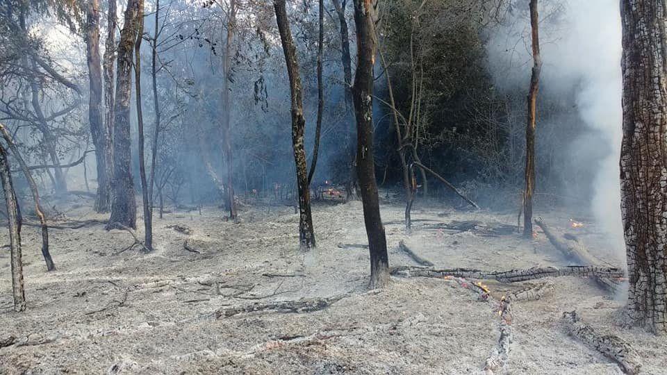 Reserva de Ciudad Evita en peligro tras sufrir dos incendios forestales