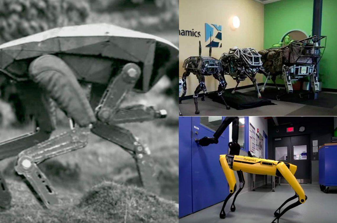 Perros robot abren la puerta y sorprenden y asustan por igual