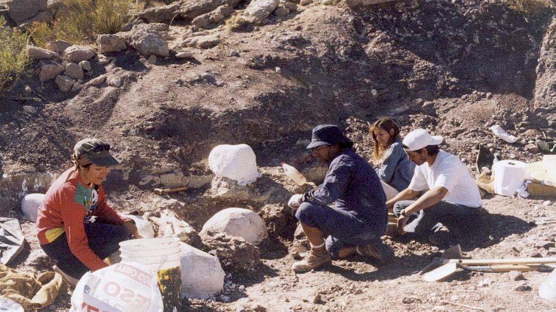 Presentan al Choconsaurus, el dinosaurio de El Chocón