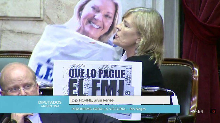 Debate tarifas: diputada sorprendió en el recinto con una gigantografía de Carrió