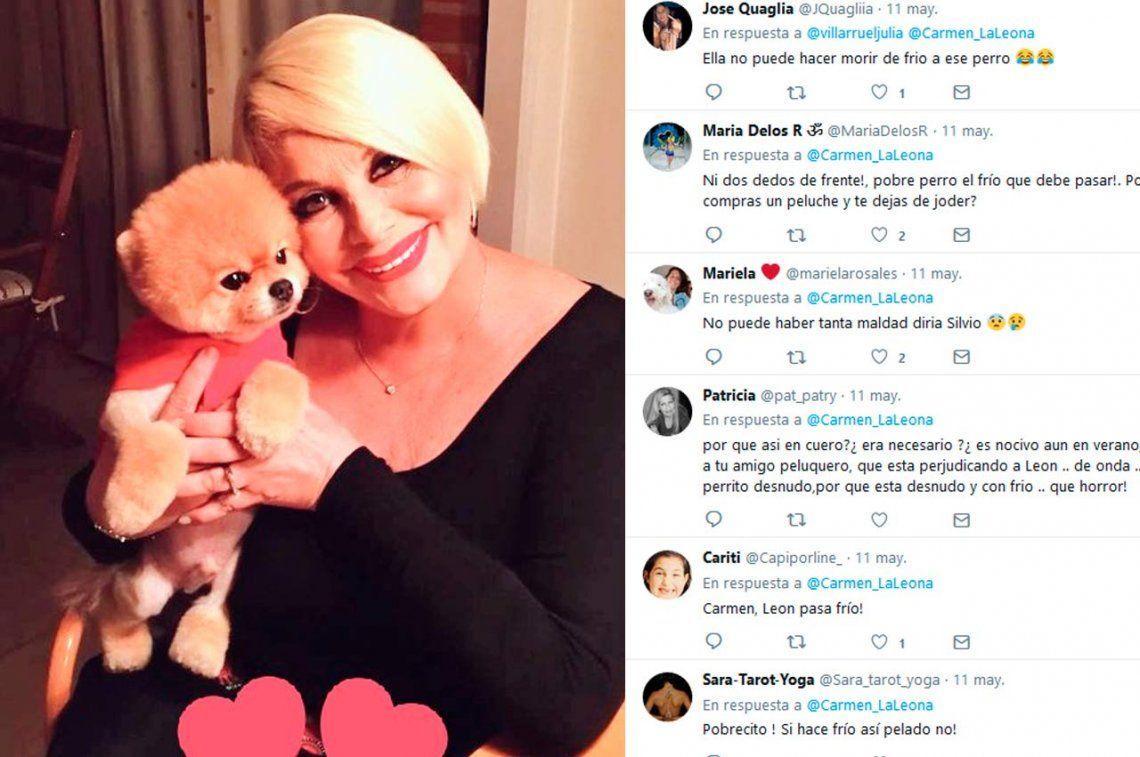 Carmen convirtió a su perro en un influencer y le llovieron las críticas