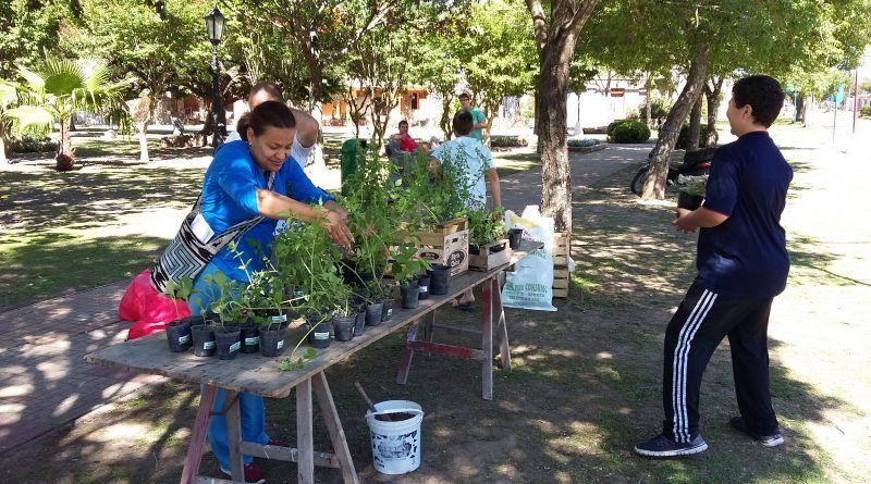 Ecocanje: entregan árboles a cambio de residuos reciclables