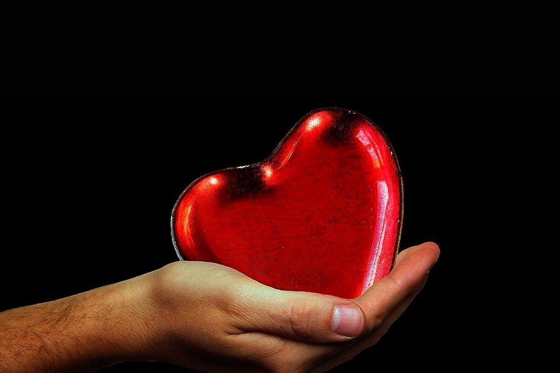 ¿Por qué hoy es el Día Nacional de la Donación de Órganos?