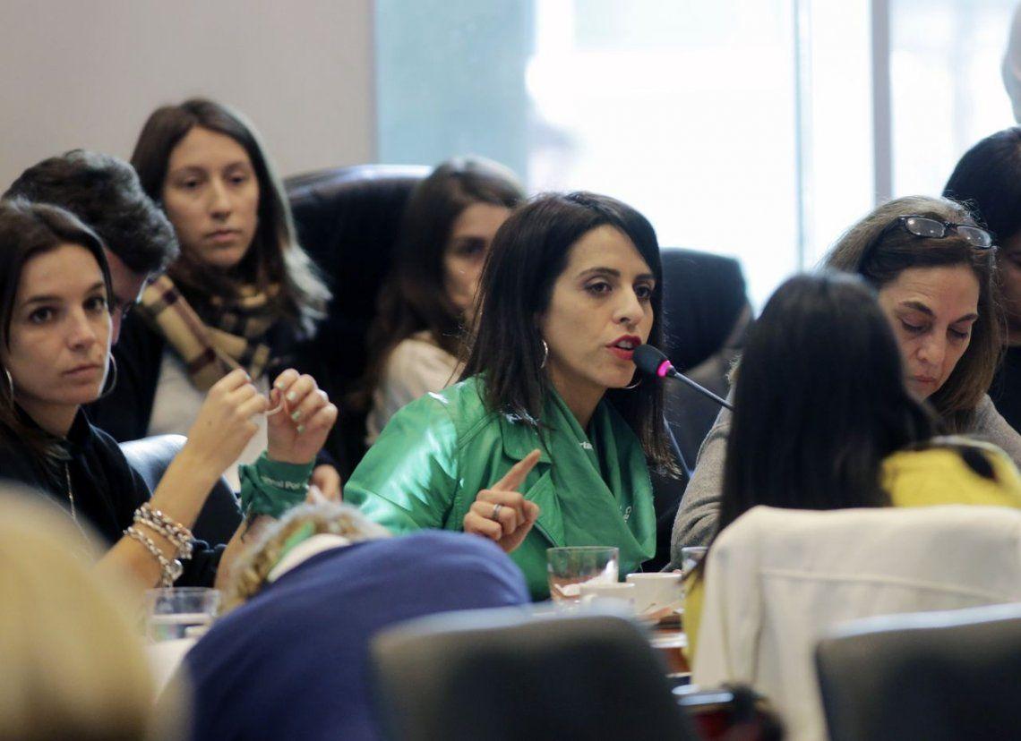 Aborto: diputadas anunciaron cambios al proyecto para seducir a los indecisos