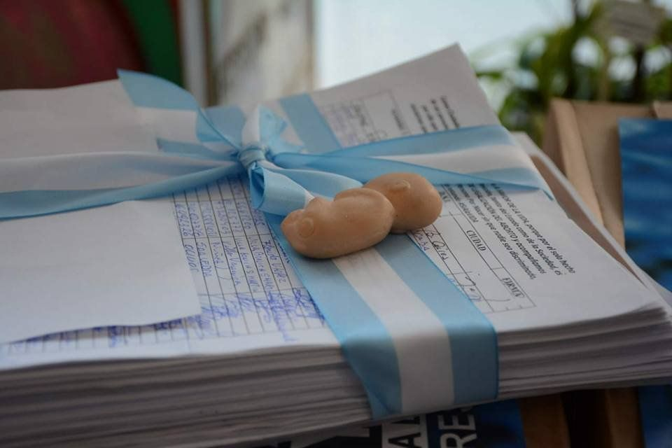 Grupos antiaborto entregaron 400.000 firmas contra la despenalización