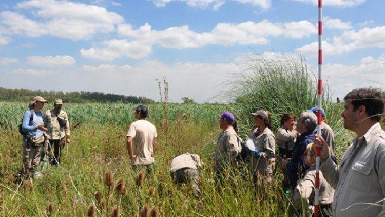 Esteban Echeverría: la Laguna de Rocha, en situación de riesgo