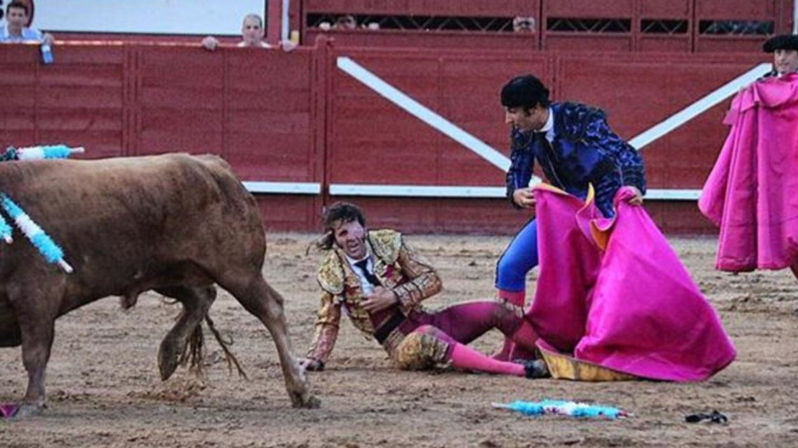 Imágenes sensibles | Un toro le arrancó el cuero cabelludo a un torero