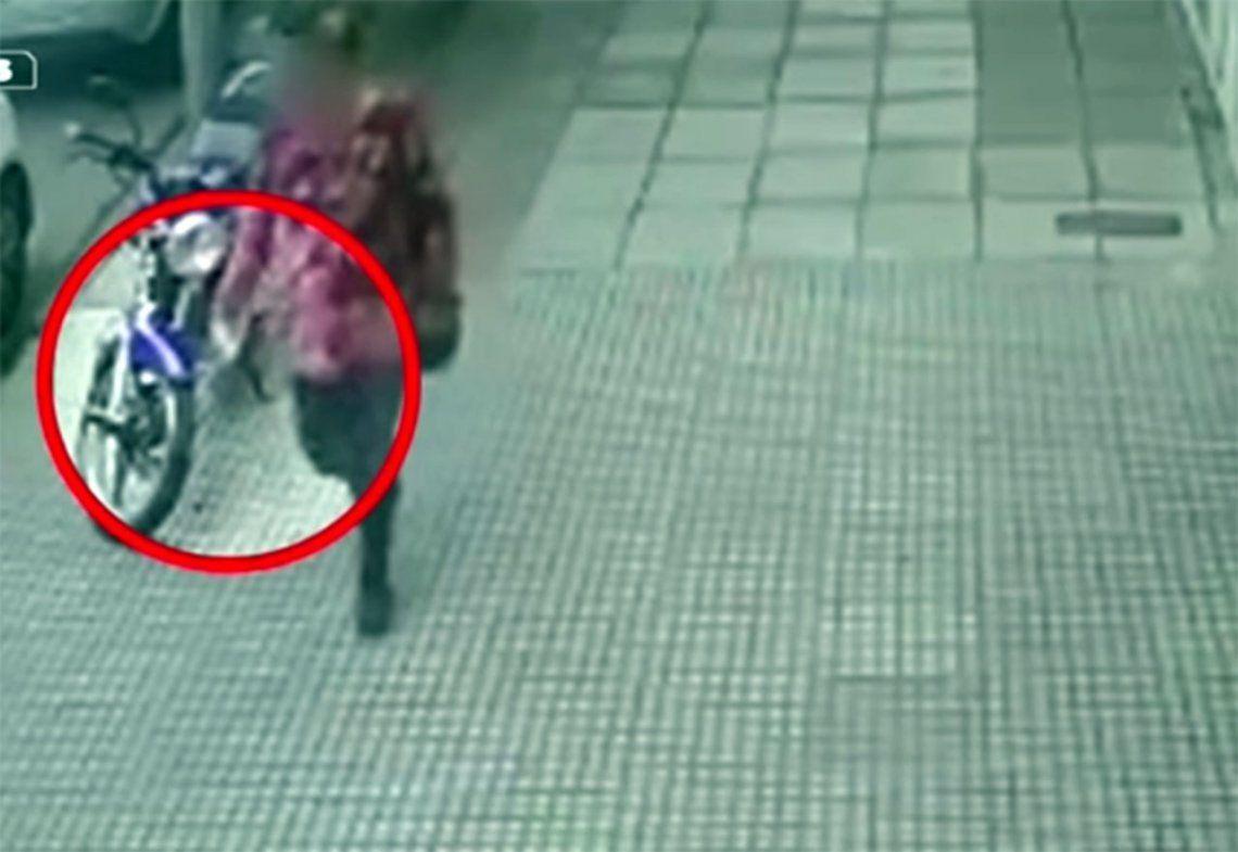 Video | Así actuaba la envenenadora de perros