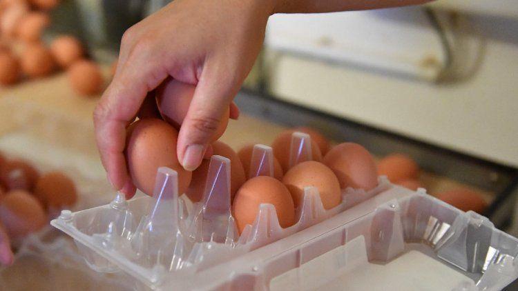 Lechuga, harina y huevos: los productos con más inflación en el primer semestre