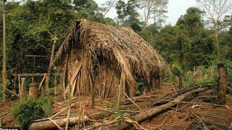 Hallan en Brasil al último sobreviviente de una tribu aislada de la civilización