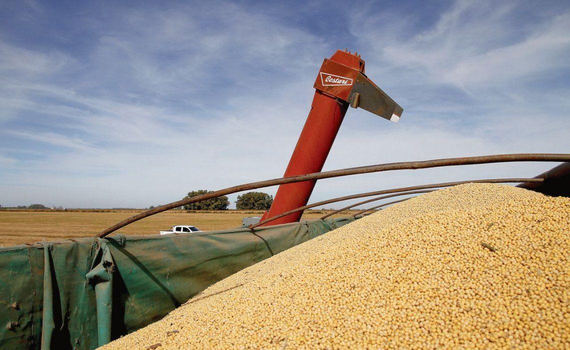 dLos retrocesos en la soja y el maíz impulsaron hacia abajo en un 20% la producción agrícola 2017-2018.