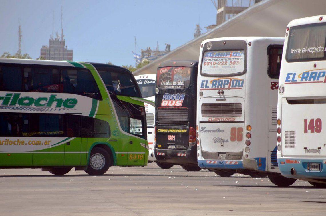 Micros low cost: desde septiembre, se podrán vender pasajes sin restricciones tarifarias