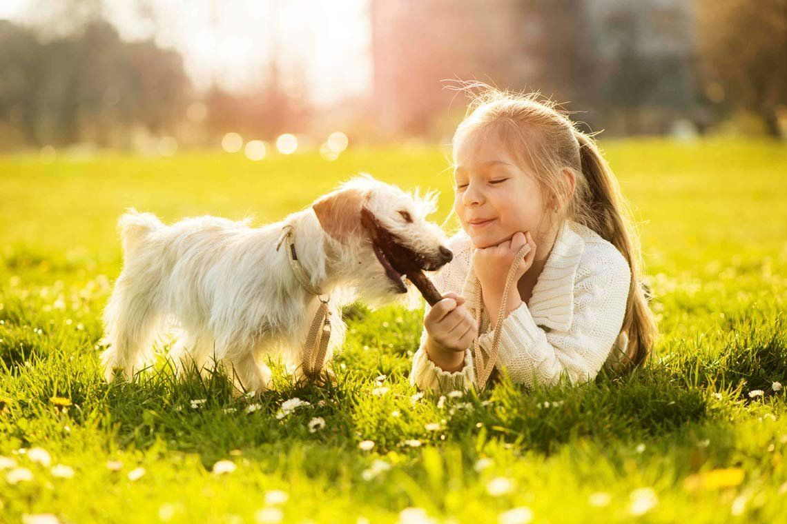 Mascotas y niños: mutuo beneficio