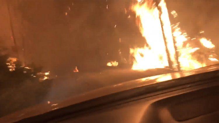 VIDEO | El dramático escape de un incendio forestal de un padre y su hijo
