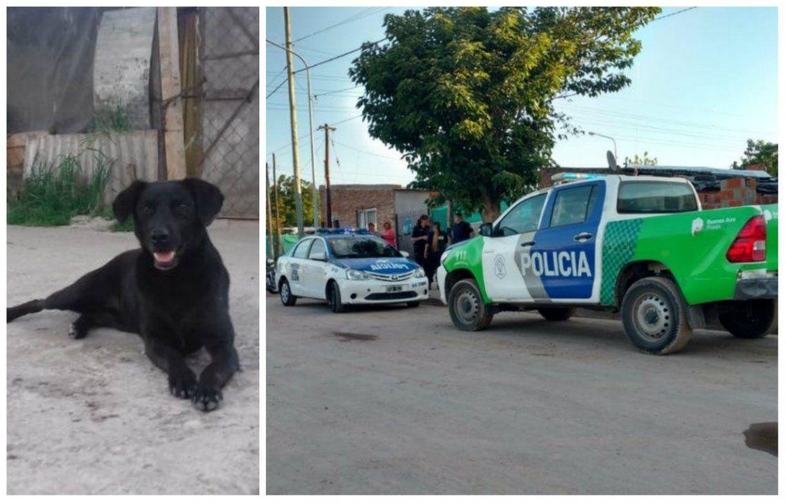 Luján: perro halló un feto muerto en una plaza y se lo llevó a su dueño