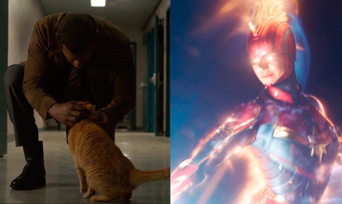 Capitana Marvel: ¿un gatito le sacó un ojo a Nick Fury?