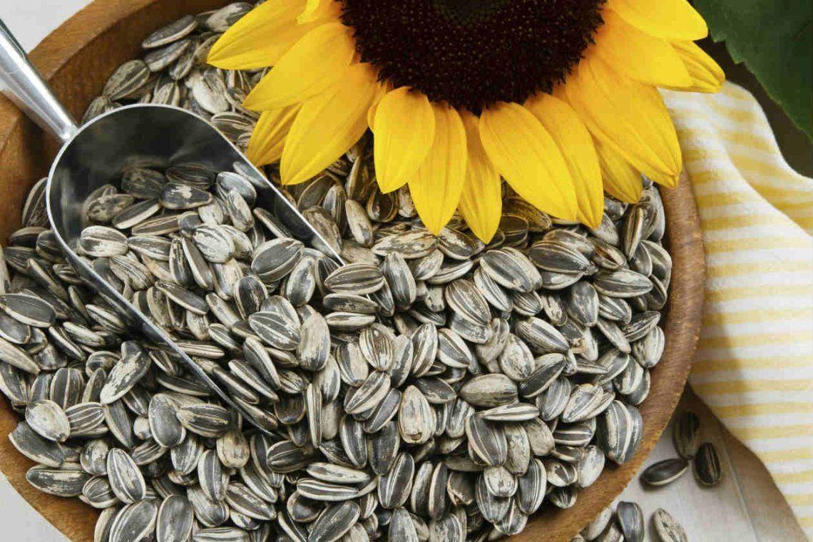 ANMAT prohibió semillas de girasol y snacks