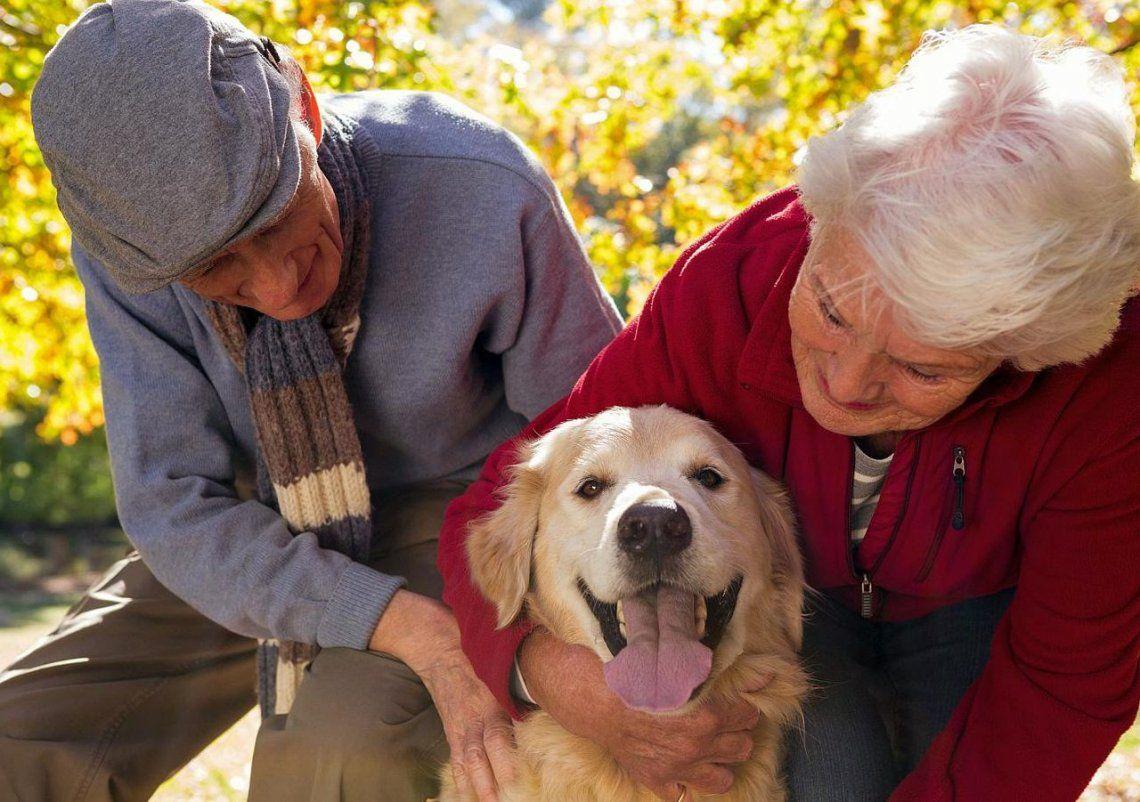 Cómo beneficia a las personas mayores tener una mascota