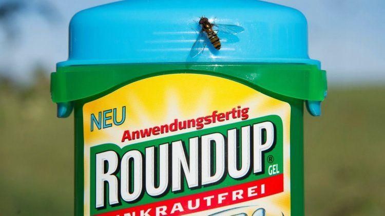 Para la Justicia, un herbicida de Monsanto contribuyó a que un hombre tenga cáncer