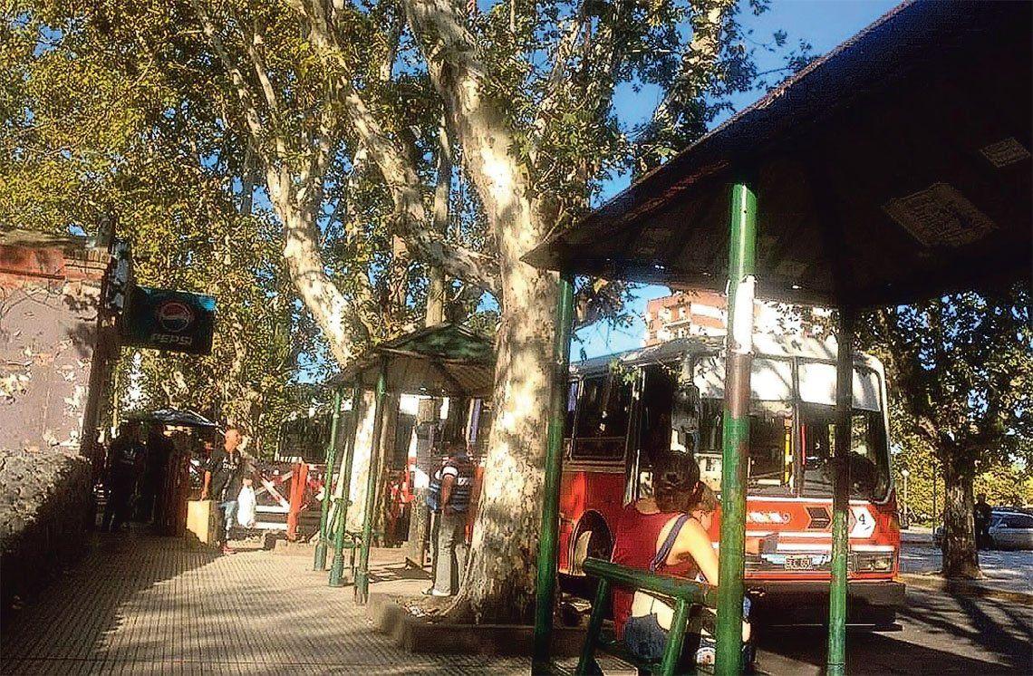 Esteban Echeverría: micros escolares llevan a los usuarios de líneas 165 y 243