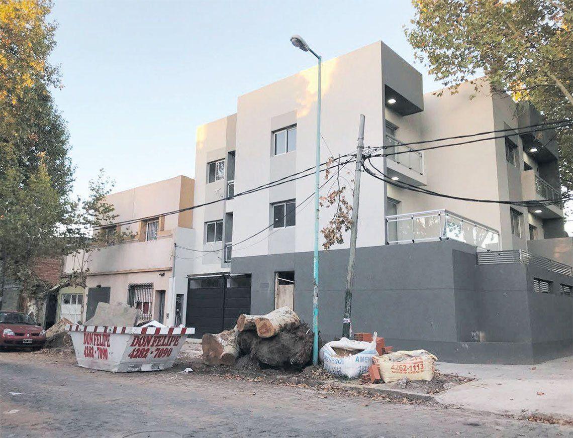 Lomas de Zamora: preocupación por podas y extracciones ilegales de árboles
