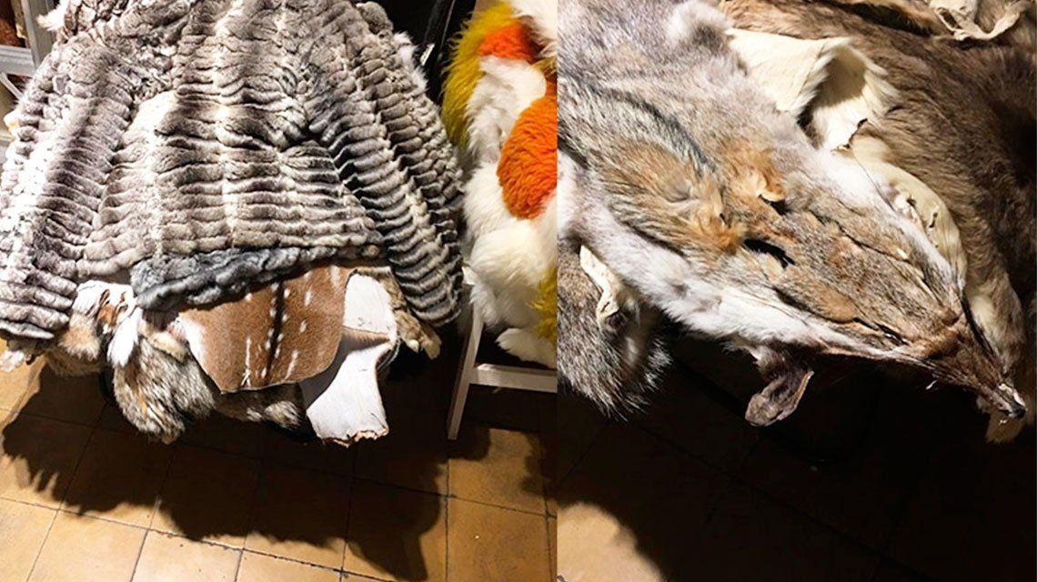 San Telmo: secuestraron casi un centenar de pieles de animales que se vendían de forma ilegal