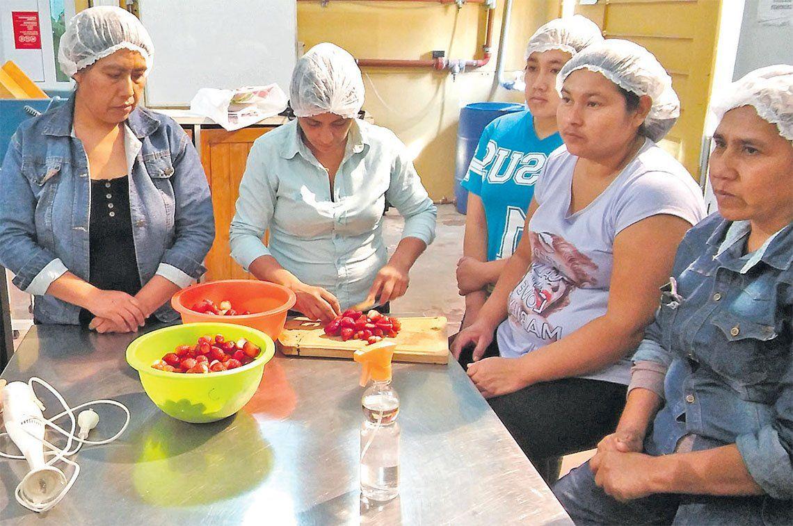 Avellaneda: huerteros y vecinos elaborarán mermeladas en Villa Dominico
