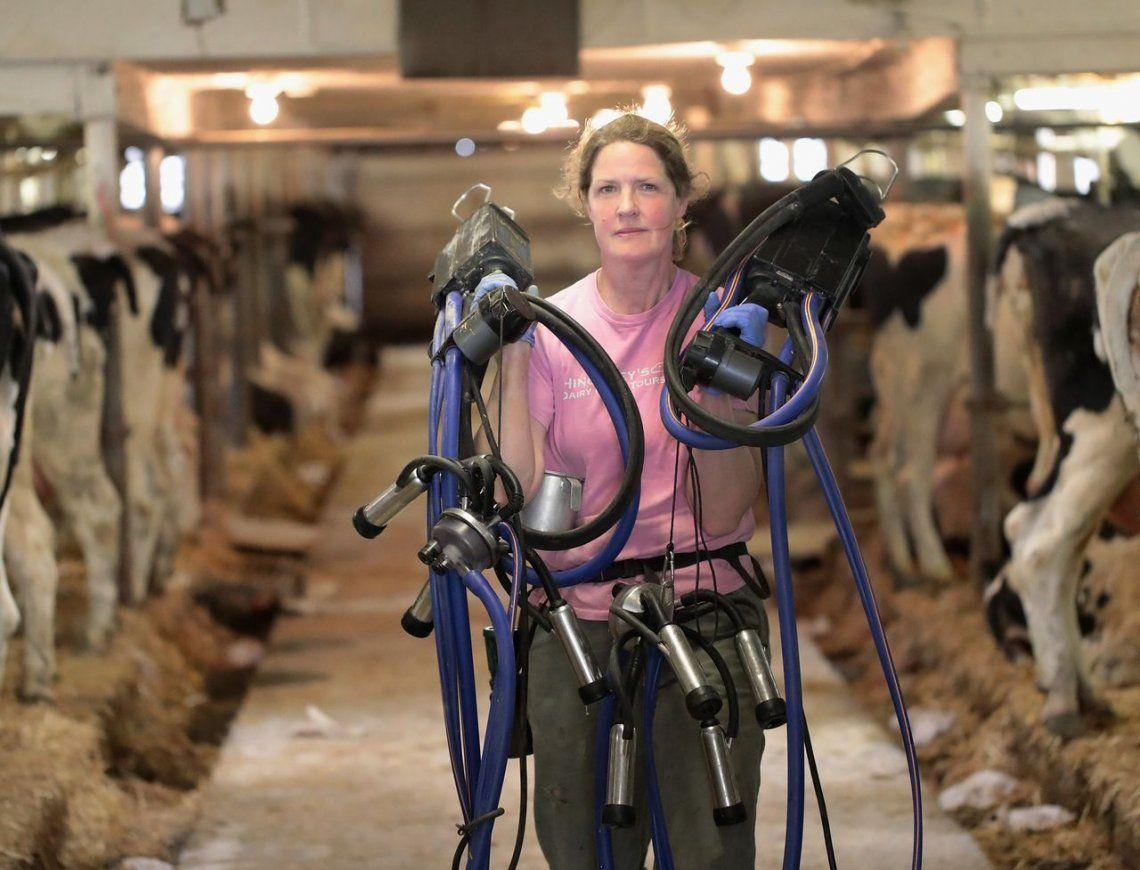 Relacionan los altos precios de la leche con menor producción