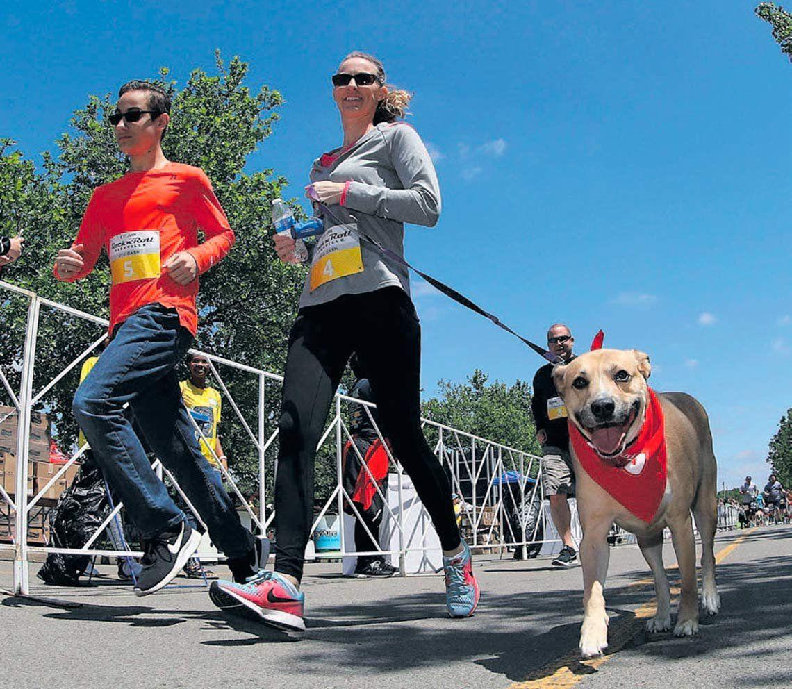 Una maratón para perros y sus dueños