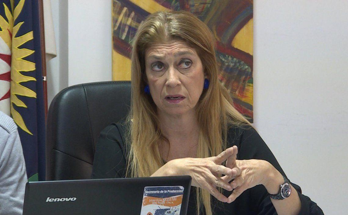 Giorgi advirtió que la caída de las ventas fue estrepitosa.