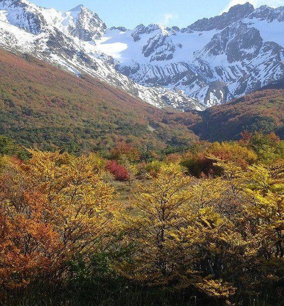 El paisaje se tiñe de colores del fuego gracias a los cambios de follaje.
