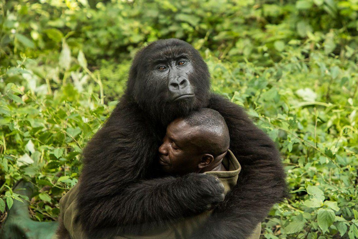 Ganador categoríaHuman/Nature:The Human Touch |James Gifford