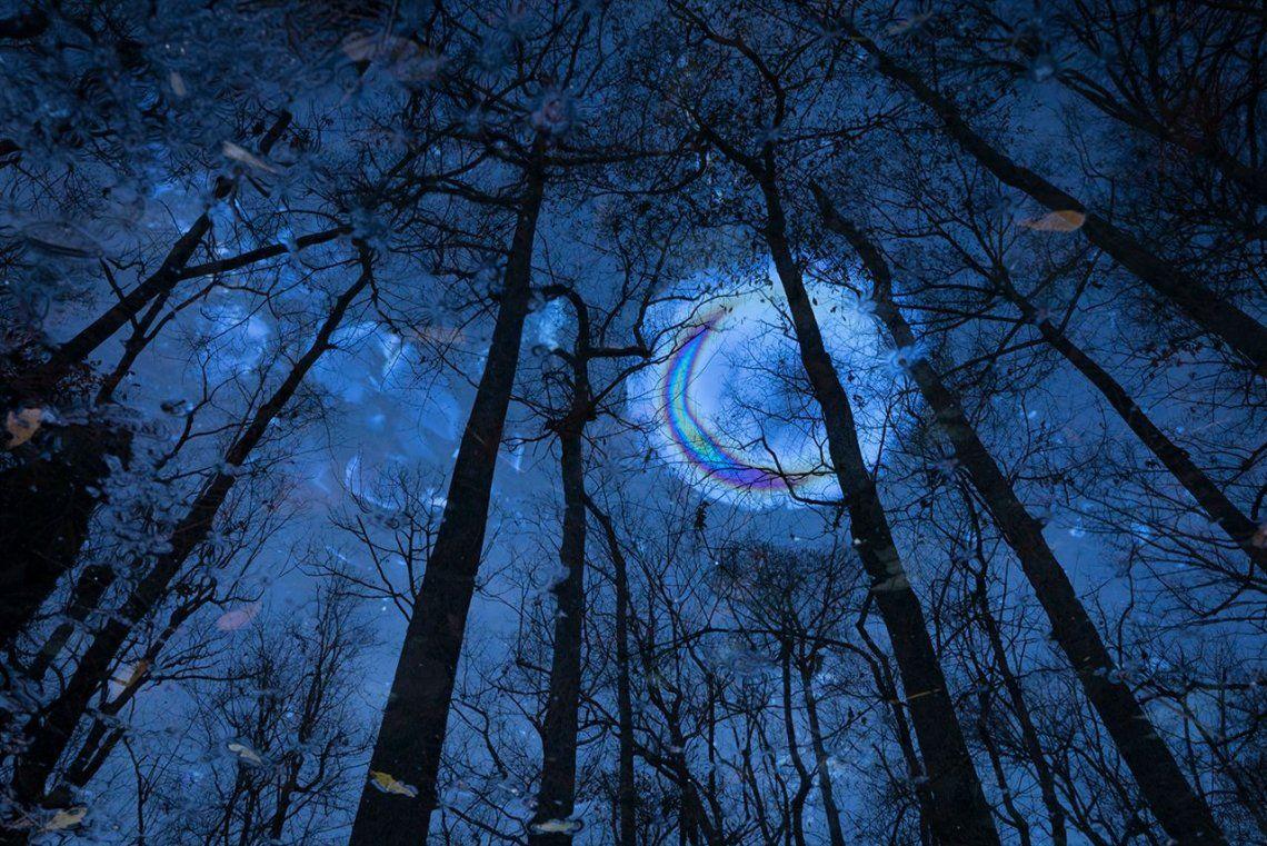 Finalista categoría Art of Nature:Midnight Oil |Mac Stone