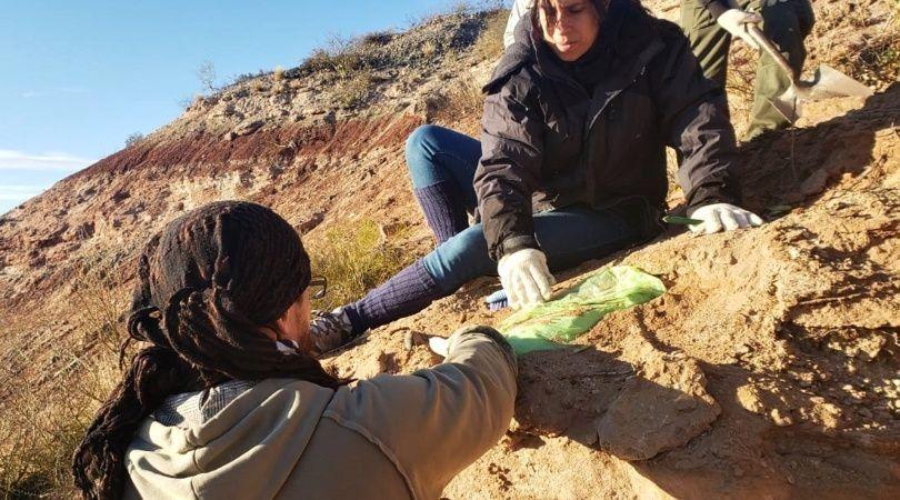 Neuquén: hallaron restos de un dinosaurio en el campus de la Universidad Nacional del Comahue