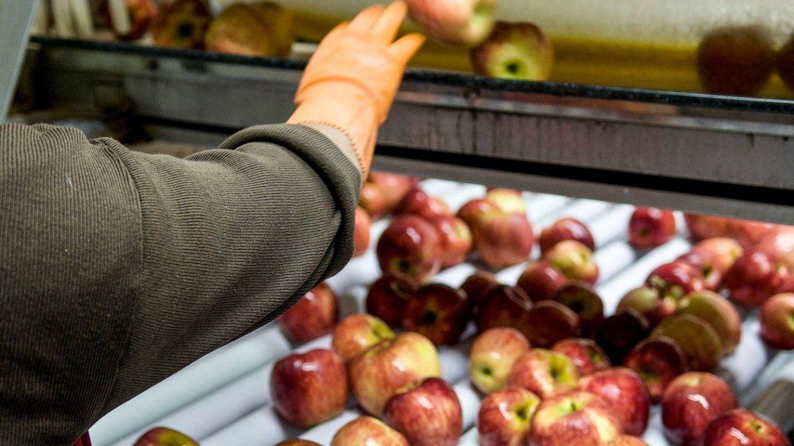 Bajan las retenciones para productos de las economías regionales