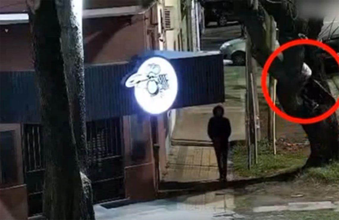 Lanús: treparon un árbol para robar una pizzería y terminaron presos