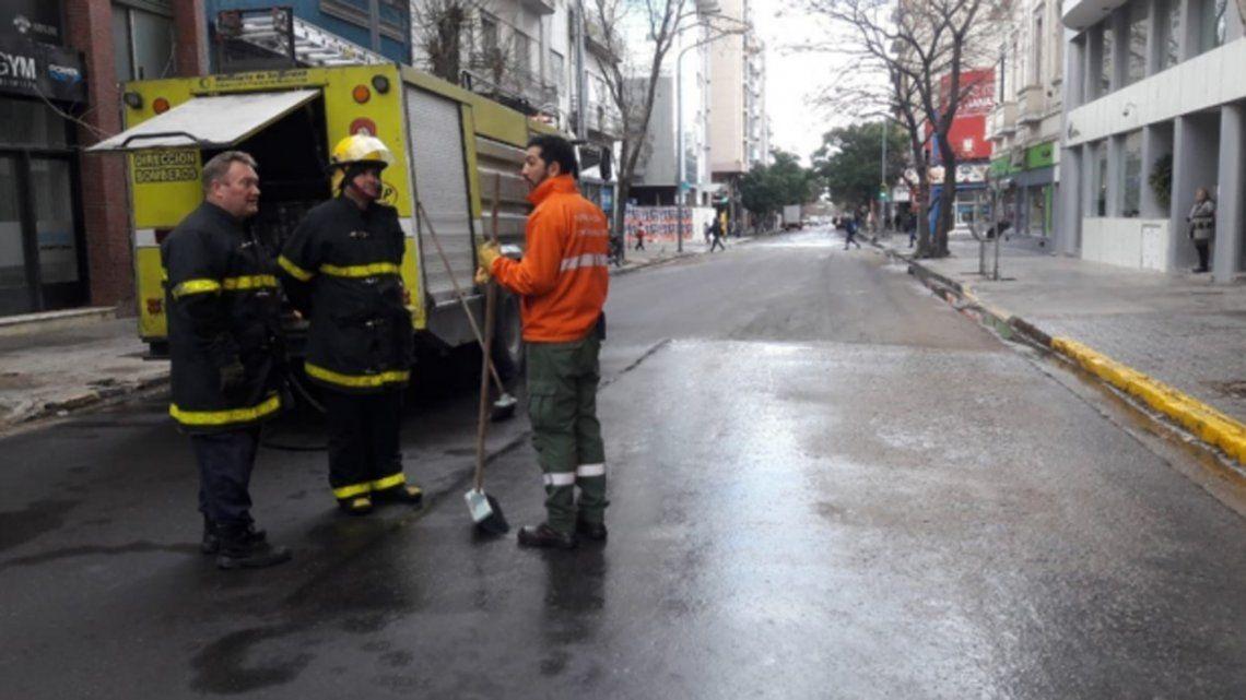 Insólito: en Bahía Blanca tuvieron que cerrar una calle por la caca de las palomas