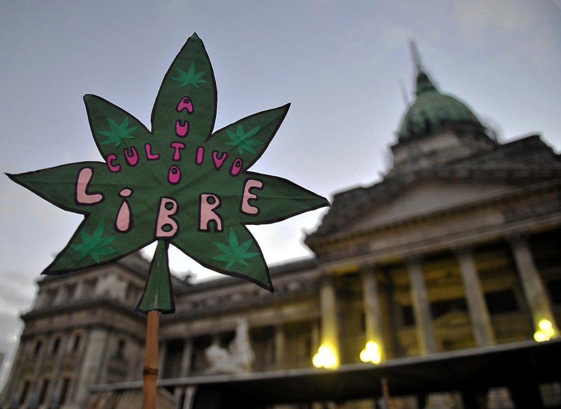 Argentina estudia la posibilidad de regular el consumo y el autocultivo de cannabis