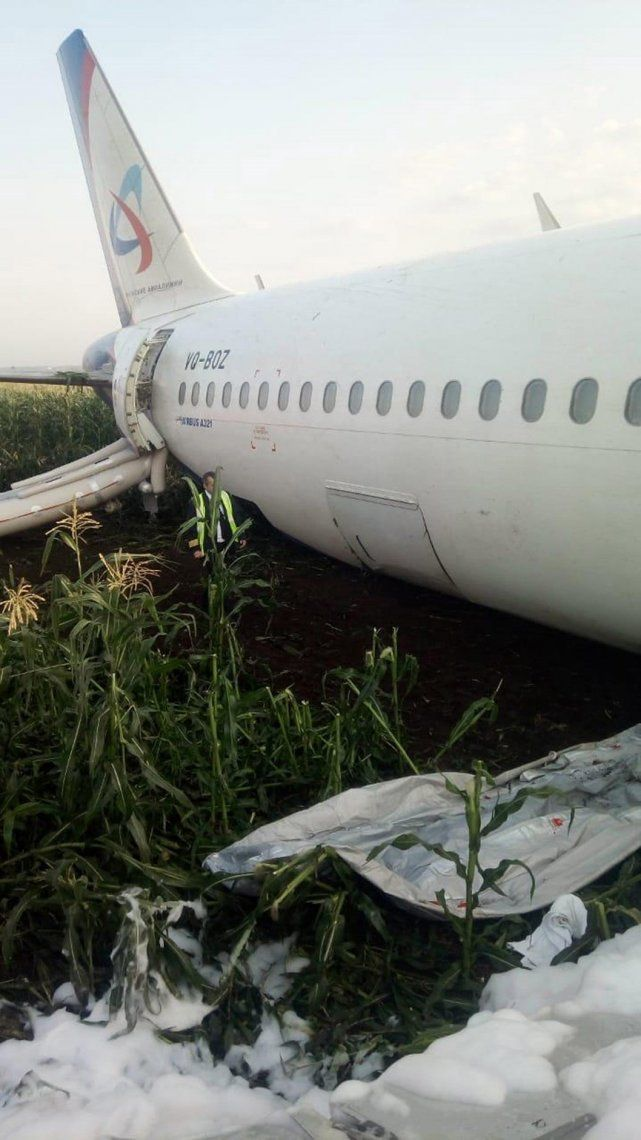 En fotos: milagroso aterrizaje de un avión lleno de turistas en un campo de maíz