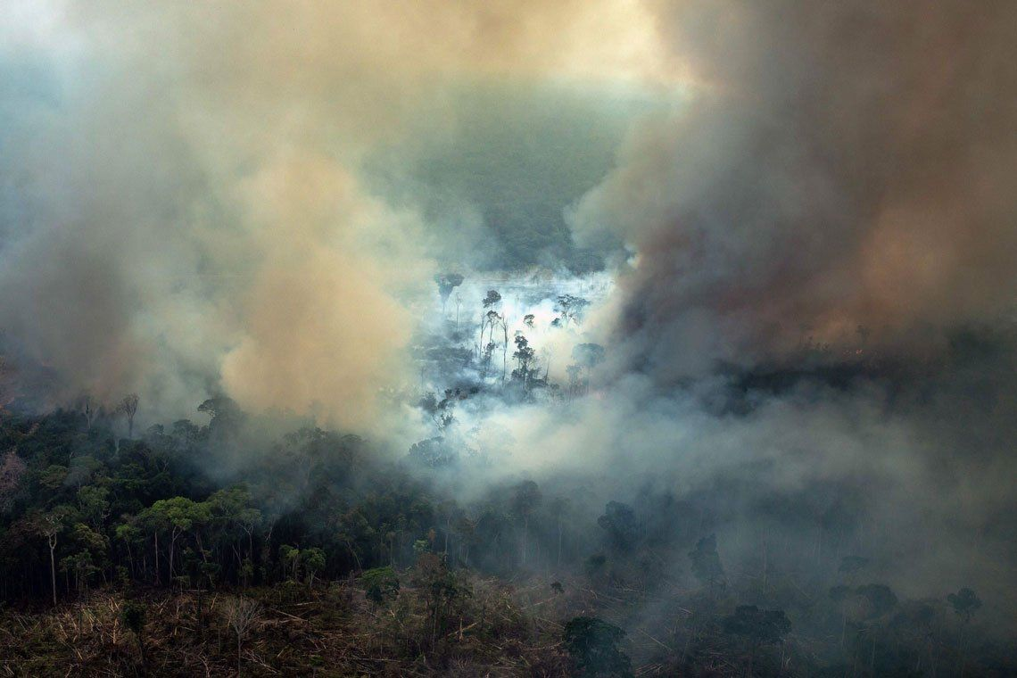 Las desoladoras imágenes del Amazonas arrasado por el fuego