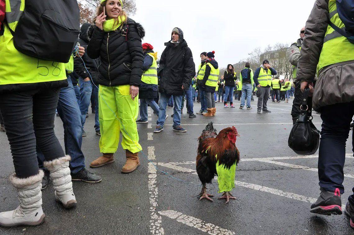 El movimiento de los Chalecos Amarillos en Francia