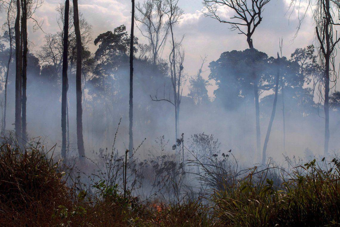 Alerta amarilla, vacunas y atrasos en el viaje: cómo se preparan los bomberos argentinos que combatirán el fuego en Amazonas
